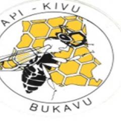 Api-Kivu