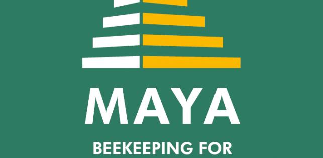 Nouveau logo Miel Maya Honing