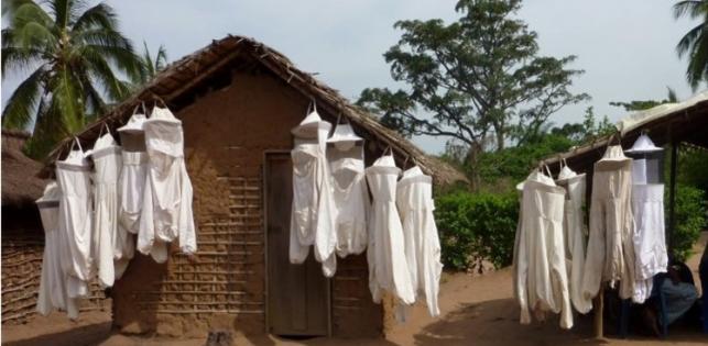 Miel Maya Honing au Kasaï (RDC)