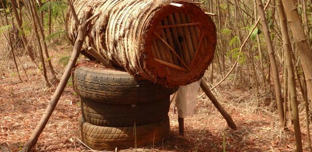 Miel Maya Honing in Kameroen