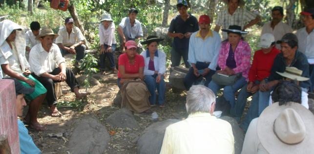 Miel Maya Honing in Bolivia