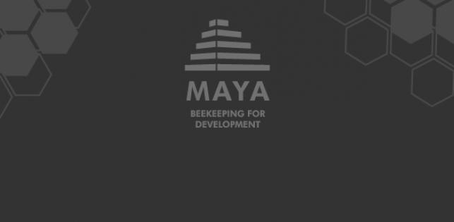 Miel Maya Honing in Mexique en Centraal-Amerika